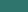 Jovial Jade